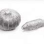 かぼちゃ・サツマイモ  (1時間)