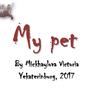"""Творческая работа """"My pet"""", Михайлова Вика, 2017"""