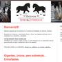 Web www.yeguada-shire-cluydesdale.com (2012)