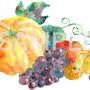 秋の味覚 イラスト 透明水彩