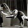 Dr Krokophant Bonifatius zeigt Boris seine Zähne.