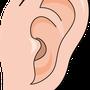 3月3日は「耳の日」でもあります!