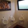 Modern und mit Kurven: Die Urinale und die Damen darüber.