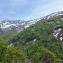 別山とブナ林。
