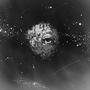 お題「不死の呪い」