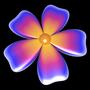 Supershape: Blume 6