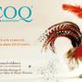 2017 Vœux du Coq – Karine Girault www.commedesidees.fr