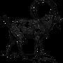 1. Rauhnacht - im Sternzeichen des Steinbock