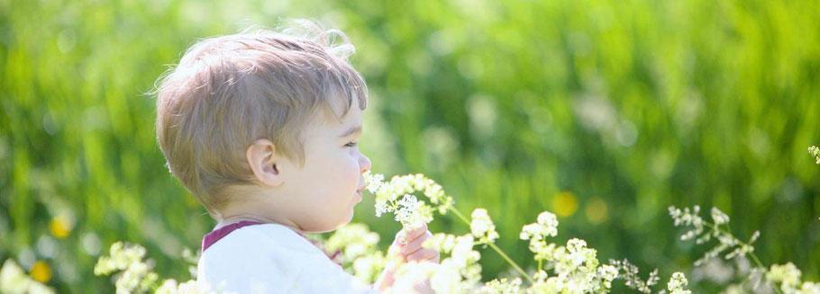 Aromatherapie und ätherische Öle als Helfersprays für Babys Kleinkinder und Familien mit baby