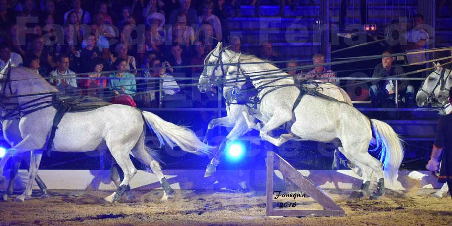 numéro de Poste HONGROISE avec 8 chevaux - Compagnie IMPULSION - Féria de BEZIERS 2016