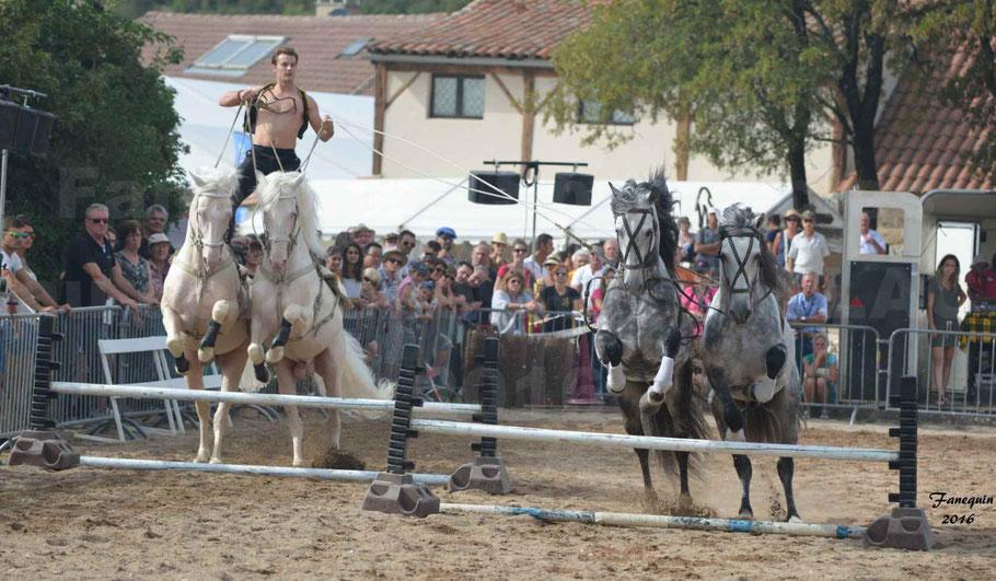 POSTE HONGROISE à 4 chevaux