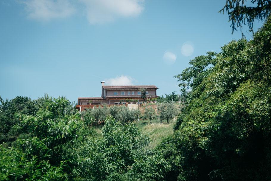Azienda Agricola Biologica Bresolin in het landschap