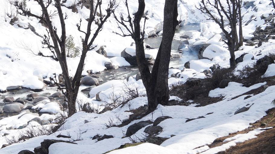 Rivière à Naranag - Cachemire