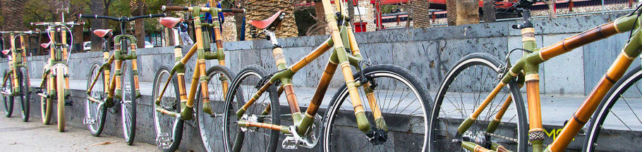 Bamboo Bike Tours bamboo bicycles different models