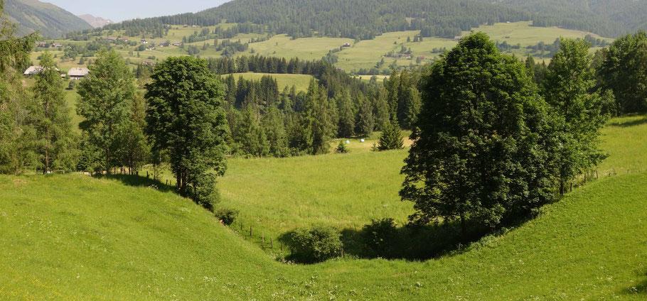 Krakauer Ebene, Steiermark