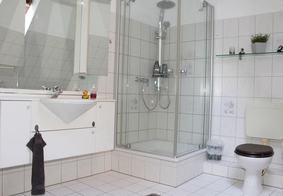 Dusch mit Tropenregen- und Massagebrause