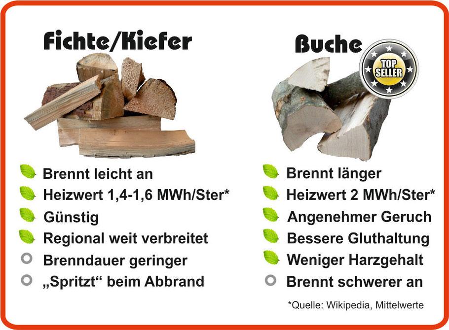 Vergleich von Hartholz zu Weichholz (Buche/Kiefer, Fichte)