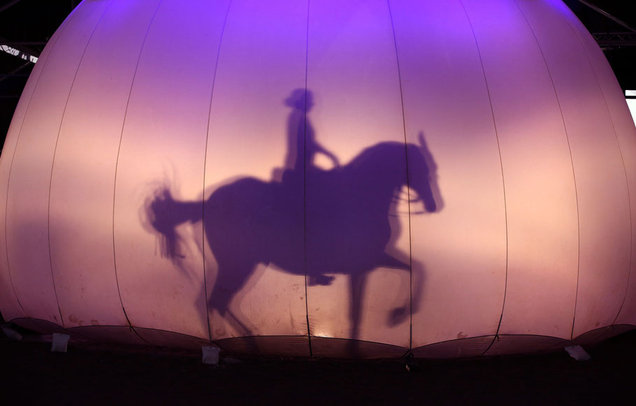 Anja Beran präsentiert mit dem Lusitanohengst Pao ein bewegendes Schattenspiel (Foto: Thomas Warnack)