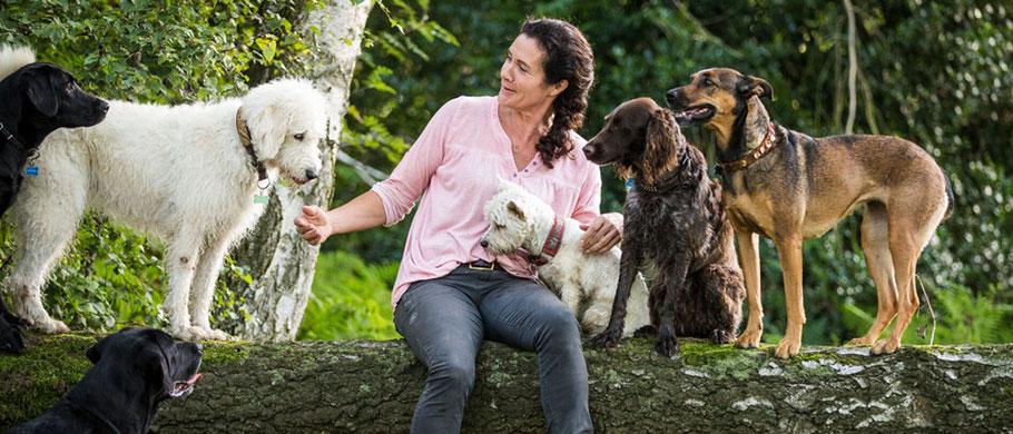 """""""Die Liebe zu jedem einzelnen der Hunde,kombiniert mit Führung und Struktur, lässt Vertrautheit und Gemeinschaftsgefühl in der Gruppe wachsen!"""" aus DogTeam, Kosmos Verlag / Foto: ©Anna Auerbach"""