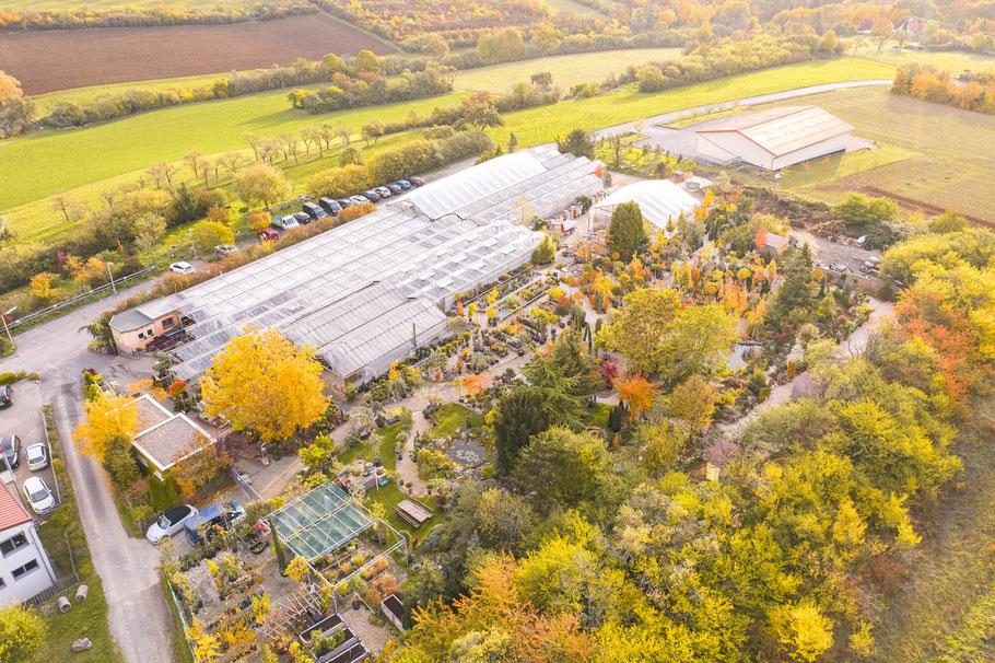 Gärtnerei Hupp Höchberg - Gartencenter in Würzburg, um Blumen und Pflanzen zu kaufen
