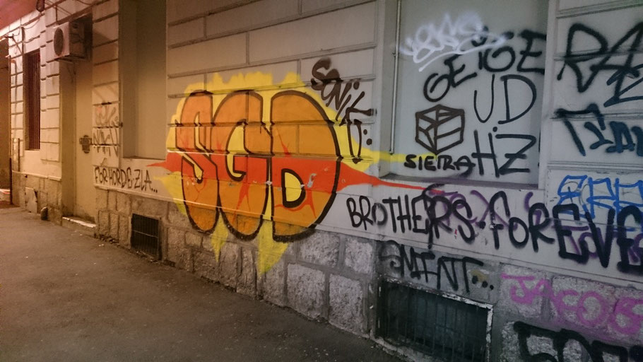 Asim-Ferhatovic-Hase Stadion FK Sarajevo Horde Zla Graffiti SGD