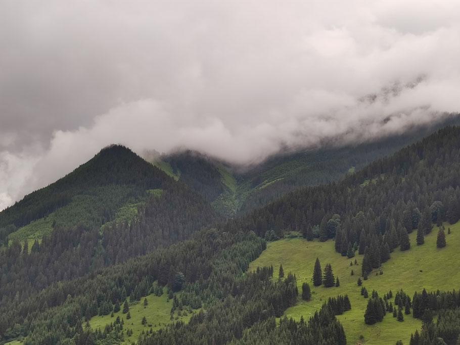 Berge Nebel Wald Lermoos Tirol