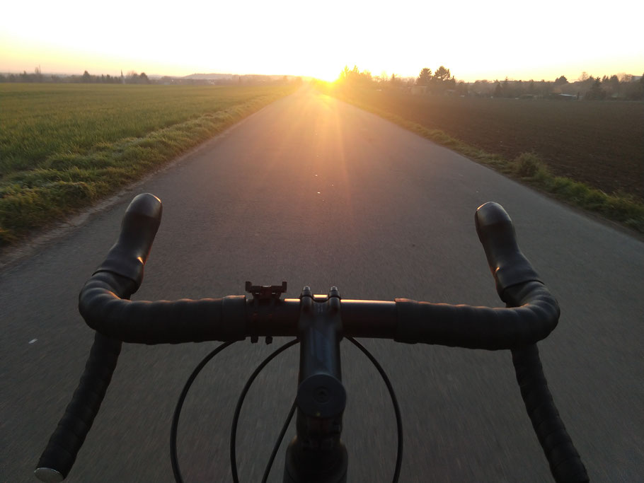 Rennrad Sunset Roadbike Bergamont