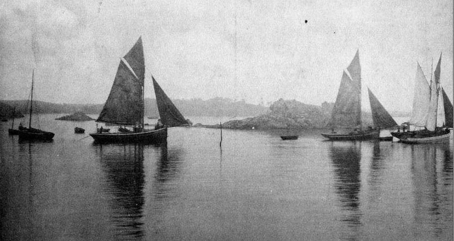 Homardiers  sortant du port de Loguivy  par petit temps
