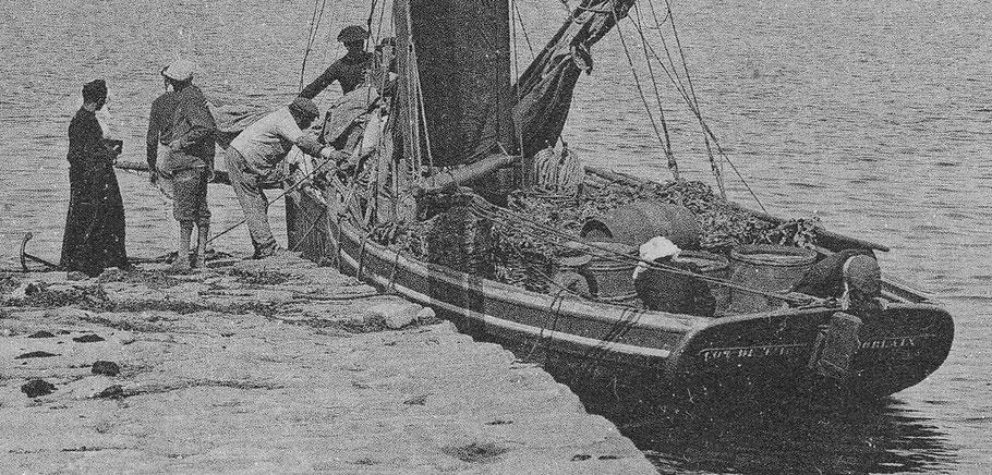 Gros plans de la CPA précédentes,  les bateaux de passage assuraient en même temps le transport des productions de légumes, des marchandises, ici des légumes et un retour de tonneaux vide et des passagers une ilienne en coiffe et un enfant avec un chapeau