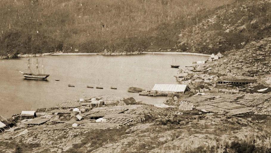 Vue typique d'un havre du french shore sur cette photographié de 1857, le navire un trois-mâts peint à batterie, les bateaux au mouillage l'échafaud, les rances les graves et les habitations (photo Paul Emile Miot 1859)