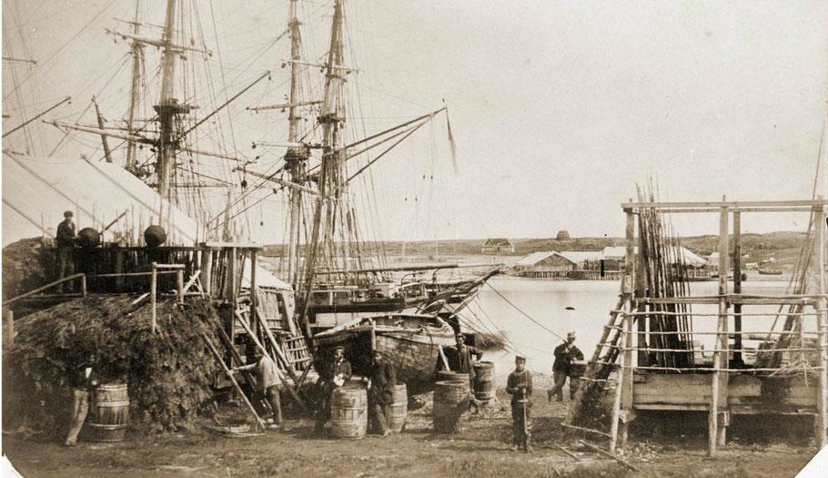 Magnifique photo d'un échafaud avec les navires au mouillage et une chaloupe halée à terre et les tonneaux d'huile de foie de morue. (photo Paul Emile Miot 1859)