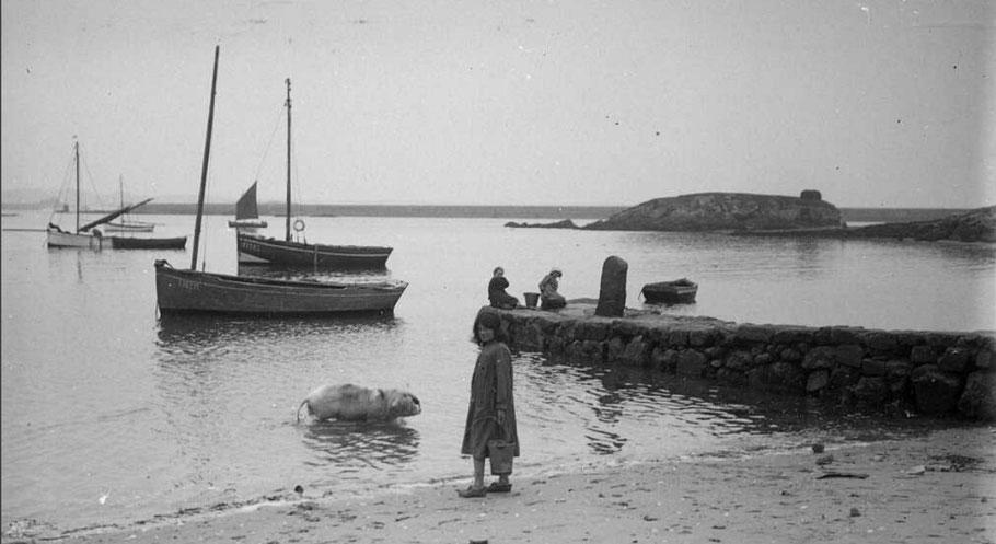 La cale de Kernoc'h vers 1923,  l'habitude ilienne de faire laver les cochons à la grève par les enfants, des jolis sloups et des canots à misaine (Photo  archives départementales du Finistère fond Chauffy)