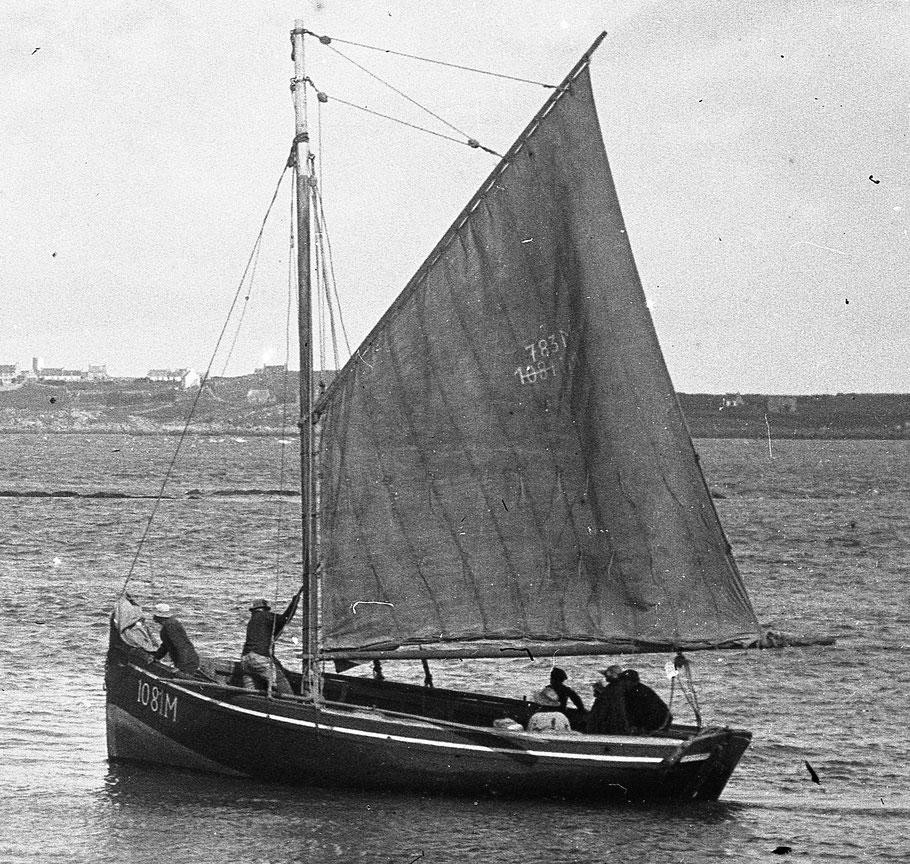 Le Coq arrive à la cale du Vil à Roscoff, le matelot a amené la trinquette, le patron a la barre vient bout au vent le matelot  utilise un aviron comme perche pour casser l'erre du bateau.   La grand-voile porte le numéro M783 de la gabare Marie Françoise