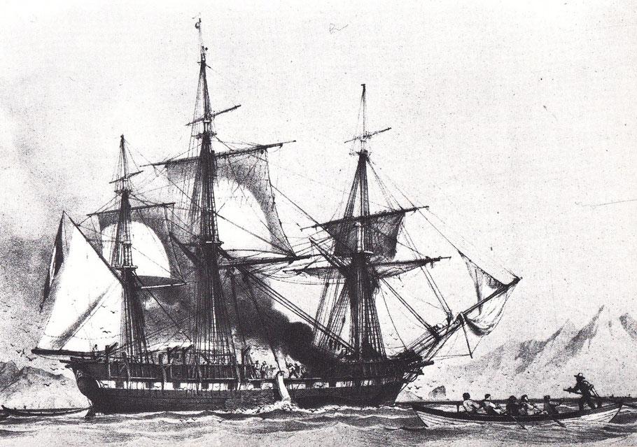 Trois-mâts baleinier français en cours d'opérations de dépeçage et de fonte et pirogue avec ses 5 hommes aux avirons