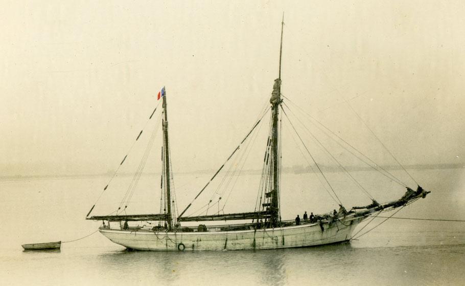 Le dundée de cabotage Dixi de Pleubian,  quartier maritime de Tréguier, construit en 1913à Paimpol. Avec ses 114,24 tonneaux de jauge brute il est plus important que le Rémora. Le Dixi est un habitué du port de Roscoff.