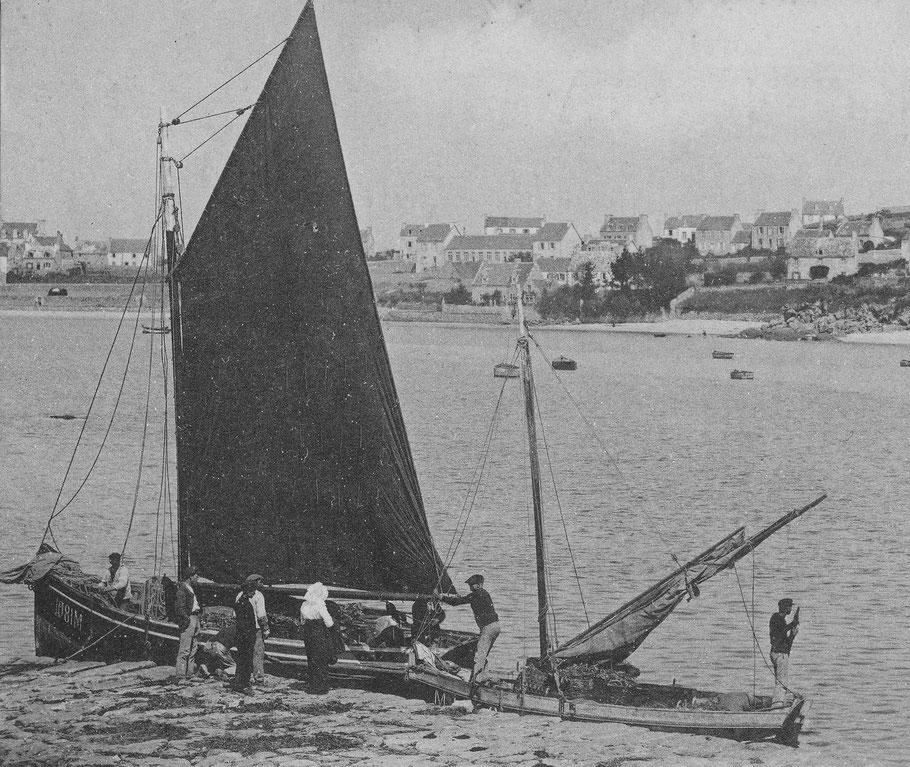 Le Coq de l'île avec sa grand-voile étable vers 1914  sur son arrière un petit sloup de passage (CPA Coll. Annie Gallou)