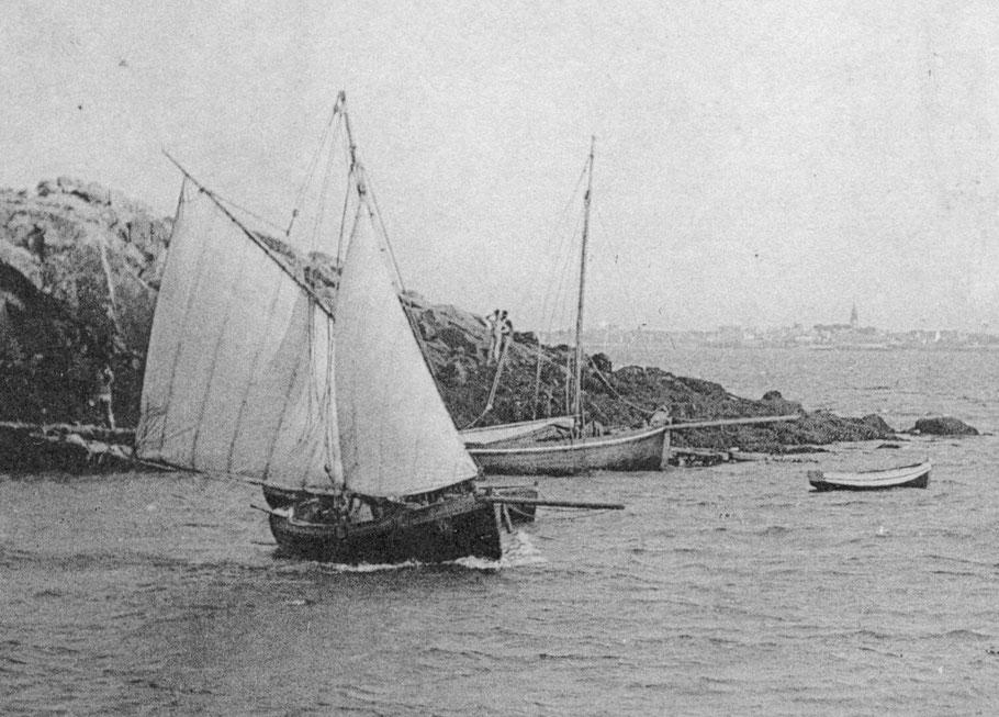 Départ de l'île aux mouton par un bon vent de sud, après avoir abattu en grand en partant de la cale, pour éviter un canot au mouillage, le patron lofe en bordant la grand voile pour faire un premier bord