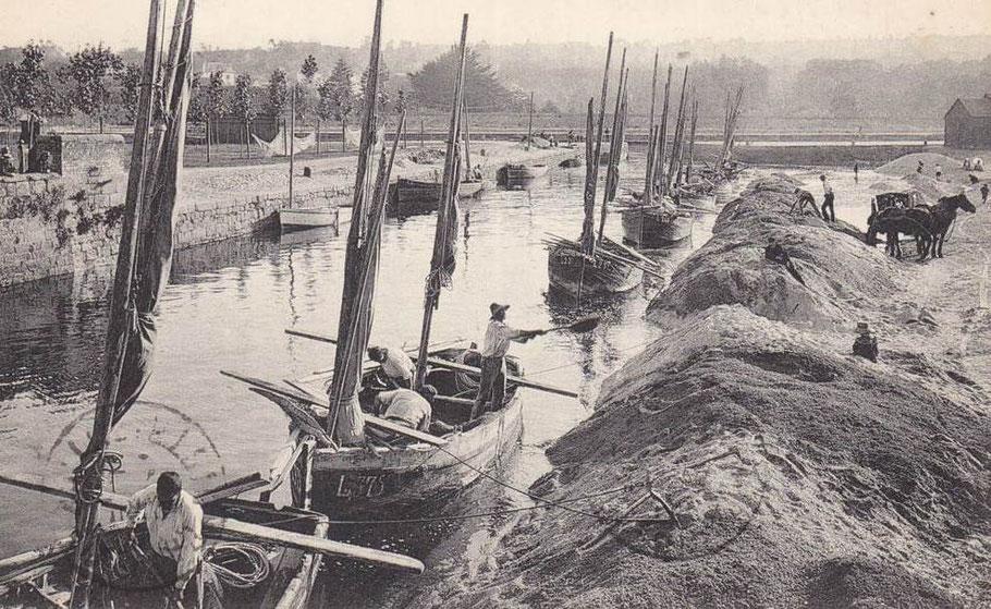 Déchargement de sable à la pelle depuis les petits bateaux sabliers de Lannion  vers 1910 (coll perso)