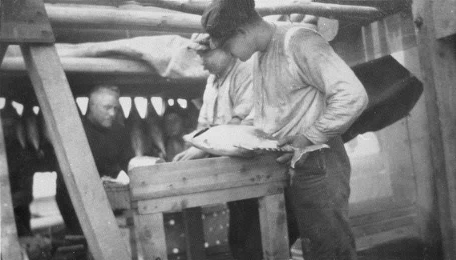 « Découpage du poisson, cette opération se fait 24 heures après la pêche en vue de la cuisson »