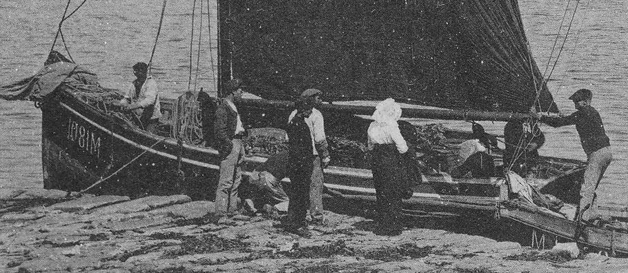 En 1914 tous les bateaux de passage et les bateaux de transport sont des bateaux non ponté, le Coq est l'un des plus gros sloup, les gabares à cul pointu sont d'un tonnage un peu plus important