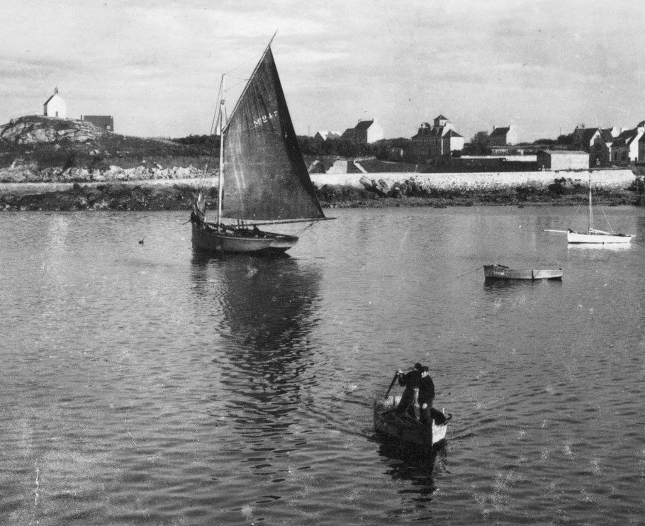 L'Ariel II Mx 2478 construit en 1928 à Roscoff, le dernier cordier aux lignes classiques, patron Esprit le Mat, matelots : Alexandre Le Saout, Vincent Rohou
