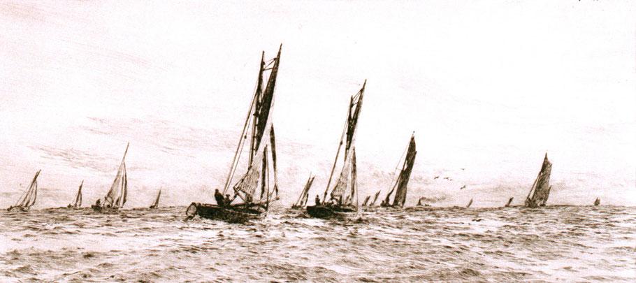 Flotte d'une quinzaine de smacks anglais armés au chalut  vers 1880 (National maritime museum)