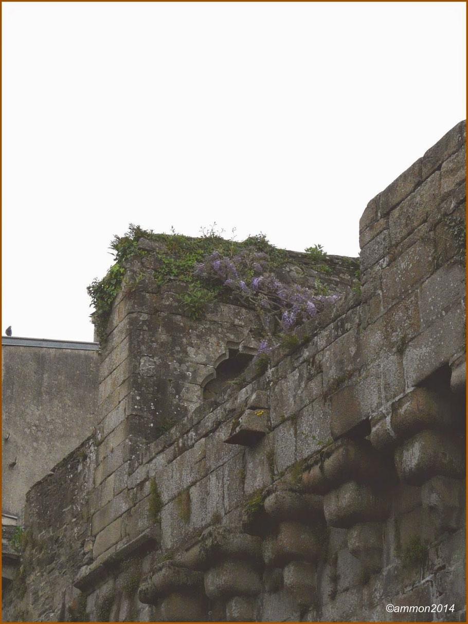 Sous les murailles de Morlaix