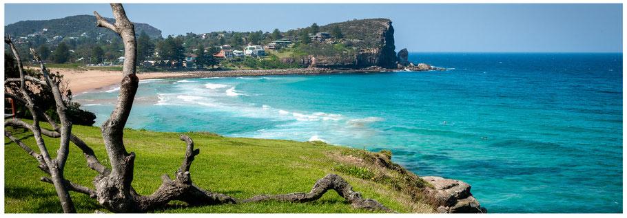 Australia, Australien, Reisebericht Australien, NSW, New South Wales, Sydney, Reisebericht Sydney, Northern Beaches, Avalon Beach, Bilgola Beach, Ku-ring-gai Chase NP, Ku-ring-gai Chase National Park, Kuring-Gai Chase