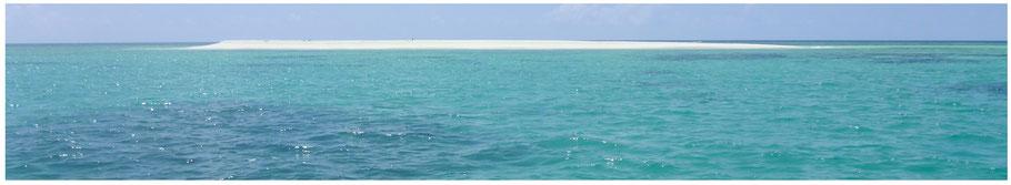 Australien, Australia, Reisebericht Australien, Reisebericht Queensland, Queensland, Far North Queensland, Lynch-Haven Rainforest Retreat, Daintree National Park, Daintree Nationalpark, Daintree NP, Ocean Safari Tour, Mackay Reef