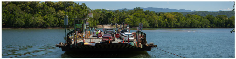 Australien, Australia, Reisebericht Australien, Reisebericht Queensland, Queensland, Far North Queensland, Daintree National Park, Daintree Ferry, Fähre über den Daintree, Daintree NP, Daintree Nationalpark