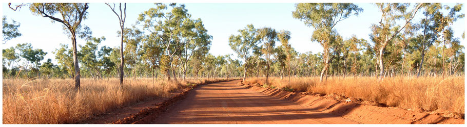 Australien, Reisebericht Australien, Australia, WA, Western Australia, Reisebericht Wester Australia, Westaustralien, Reisebericht Westaustralien, Kimberley, Kimberleys, Gibb River Road, GRR, El Questro, El Questro Wilderness Park,
