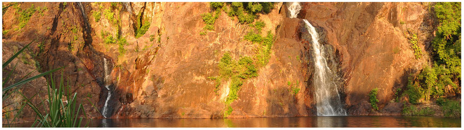 Australien, Reisebericht Australien, Northetrn Territory, Top End, Reisebericht Top End, NT, Litchfield National Park, Wangi Falls Camping, Wangi Falls, Reynolds River, Reynolds River Track, Reynolds River Crossing