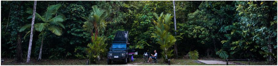 Australien, Australia, Reisebericht Australien, Reisebericht Queensland, Queensland, Far North Queensland, Lynch Haven Rainforest Retreat, Lynch Haven, Daintree National Park, Daintree NP, Daintree Nationalpark, Cape Tribulation