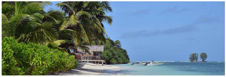 Seychellen, Reisebericht Seychellen, La Digue, Reisebericht La Digue, La Digue Island Losge, Anse Réunion